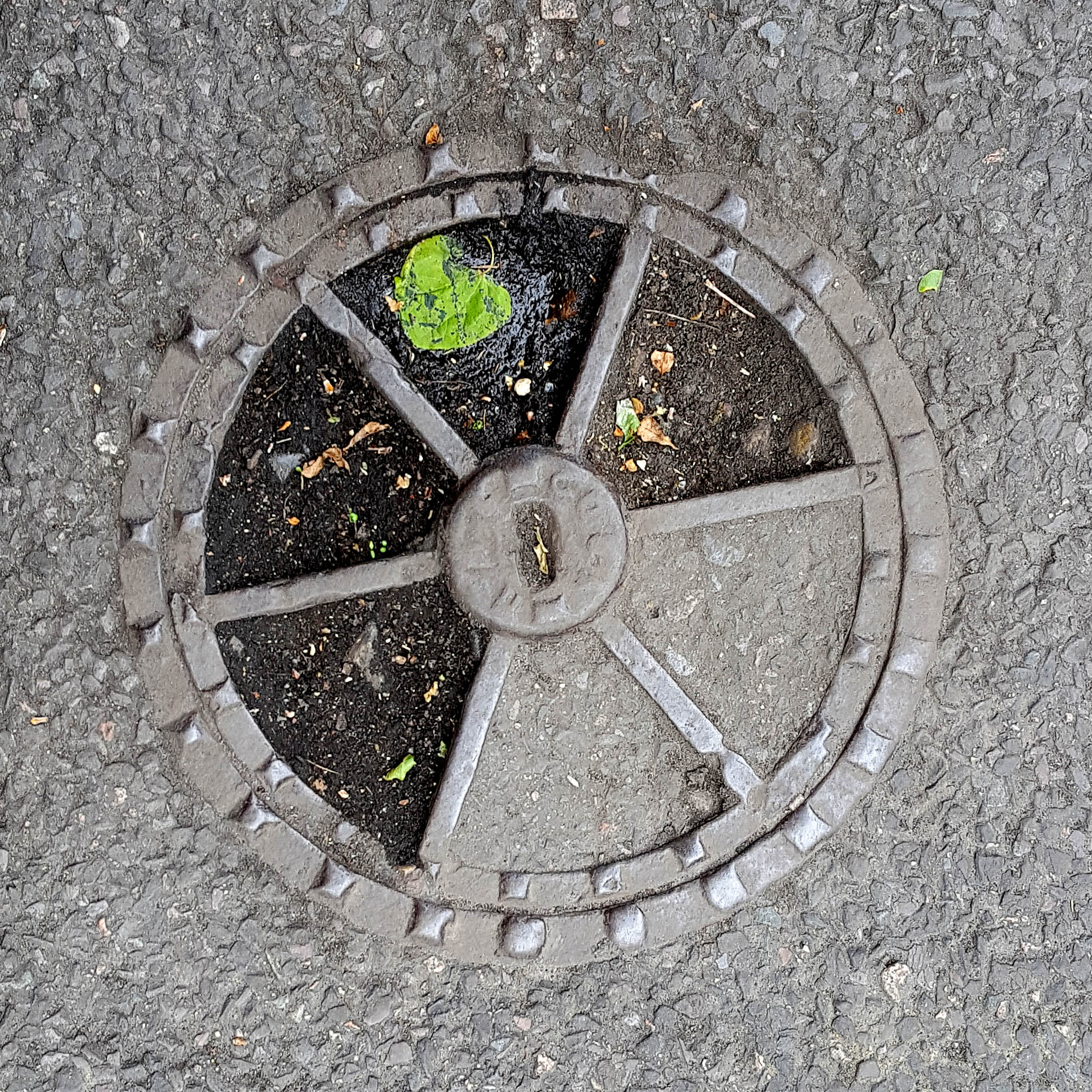 Manhole Cover, London - Cast iron surround with six segments of concrete and dirt